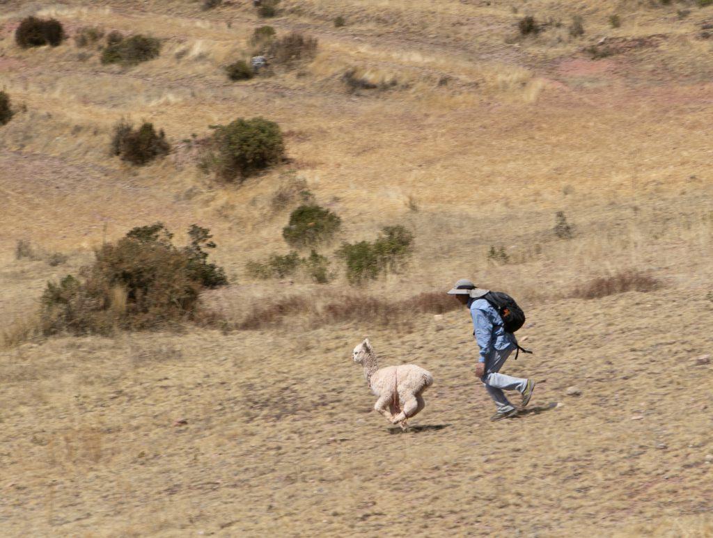 Nature walk in Chinchero, Peru