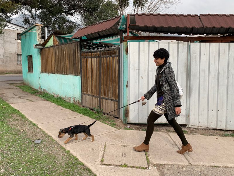 Monse walking Pitu, Santiago, Chile ©2019, Cyndie Burkhardt