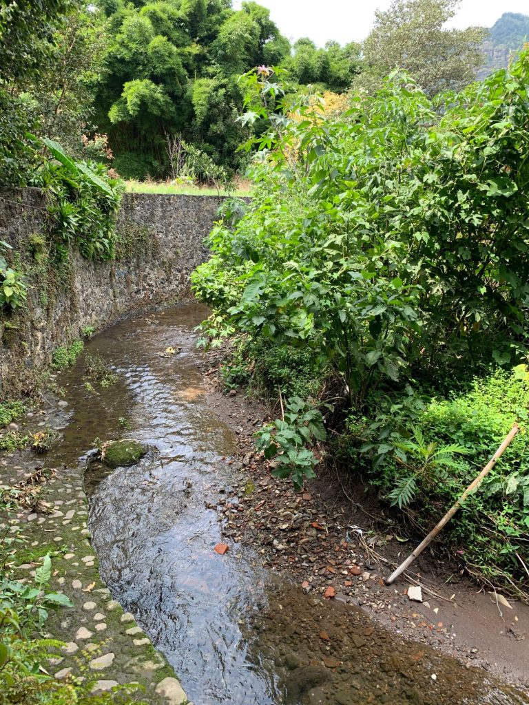 Stream on temazcal property, Tepoztlan, Mexico ©2019, Cyndie Burkhardt.