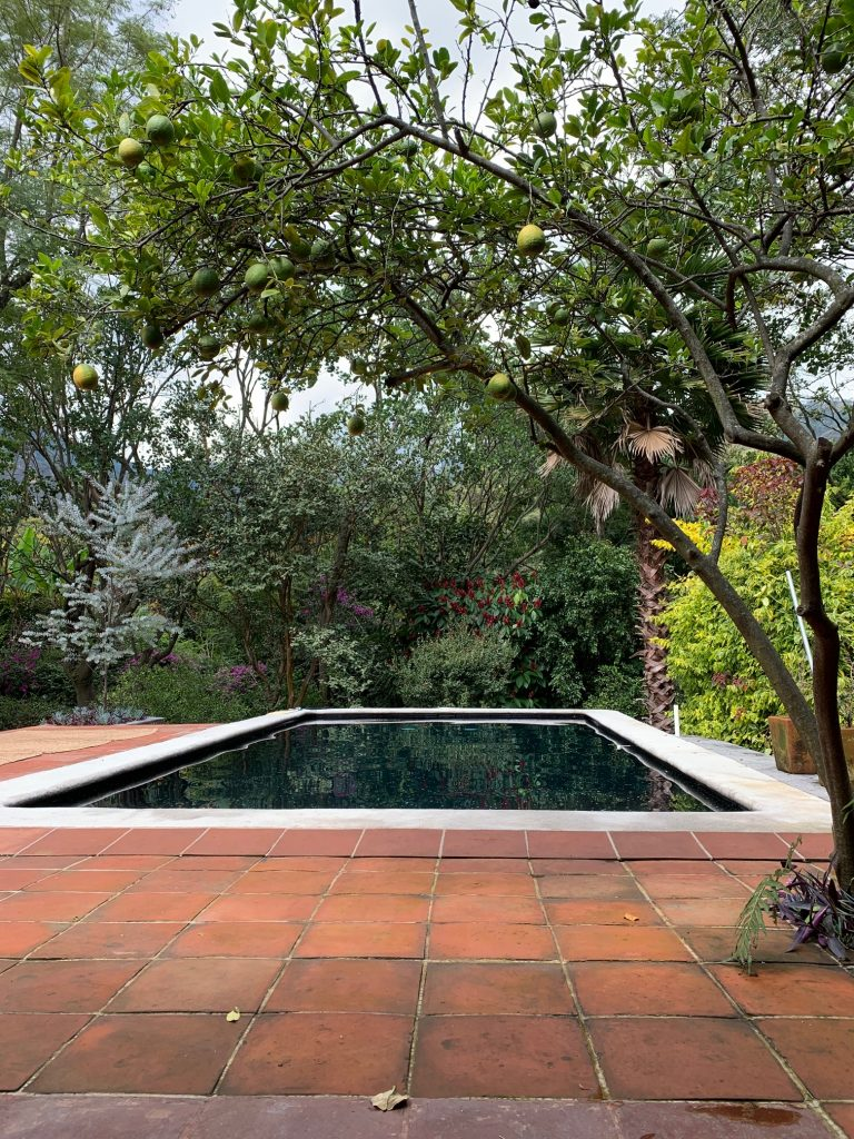 Pool, on temazcal property, Tepoztlan, Mexico ©2019, Cyndie Burkhardt.