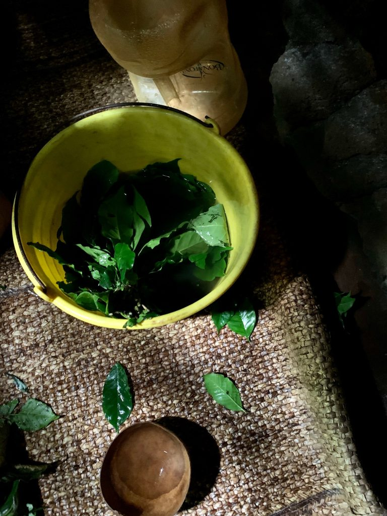 Leaves and herbal infusion, inside the temazcal, Tepoztlan, Mexico ©2019, Cyndie Burkhardt.