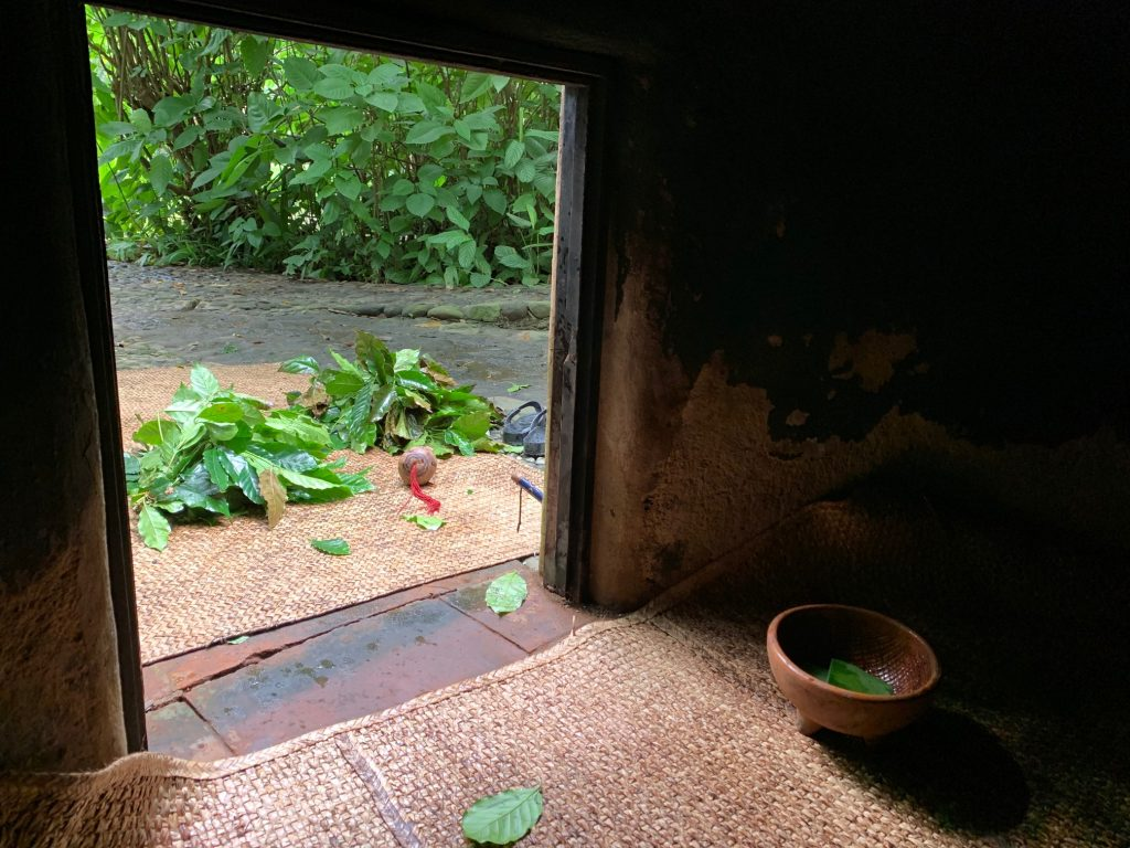 Looking out from inside the temazcal, Tepoztlan, Mexico ©2019, Cyndie Burkhardt.