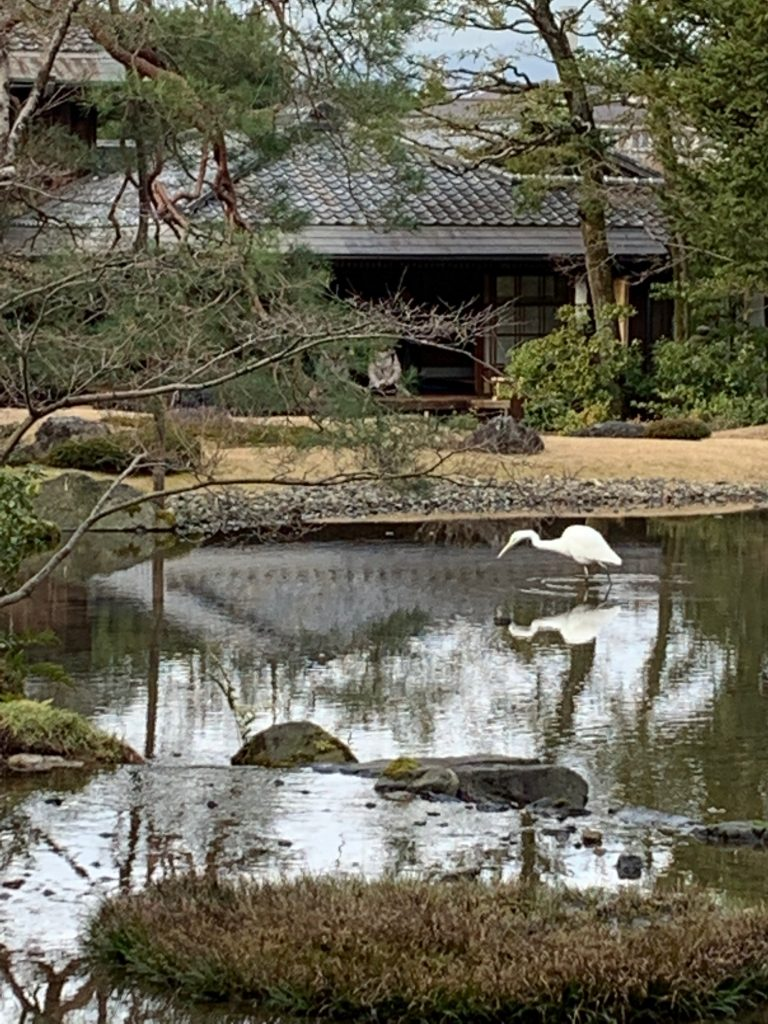 Murin-an Japanese garden, Kyoto, Japan ©2020, Cyndie Burkhardt.
