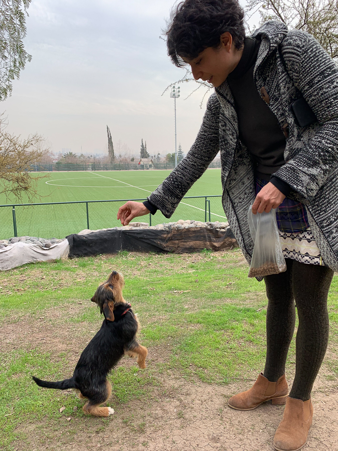 Monse and Her Puppy, Santiago, Chile ©2019, Cyndie Burkhardt.